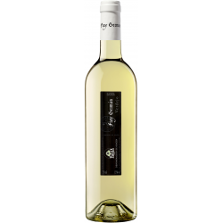 Fray Germán Verdejo 2017